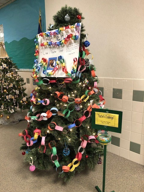 Friends of Rachael club tree presented at the Festival of Trees event held at the Union City Elementary School.