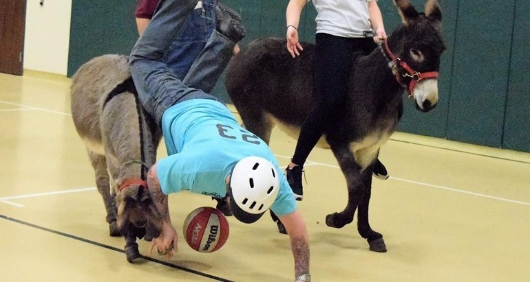 Donkey Basketball 2019